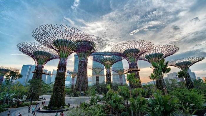 Du Lịch Singapore Giá Rẻ Tự Túc - Tại Sao Không?