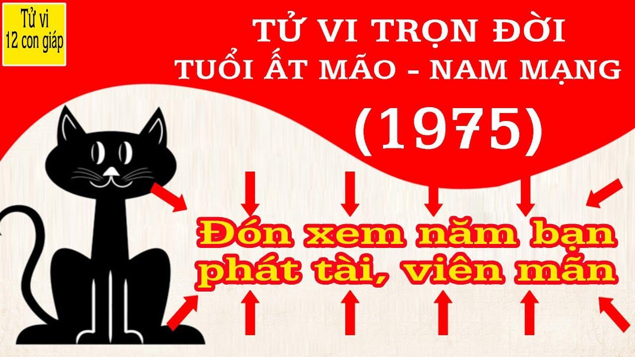SINH NĂM 1975 LÀ CUNG MỆNH GÌ? TỬ VI TUỔI NĂM 1975