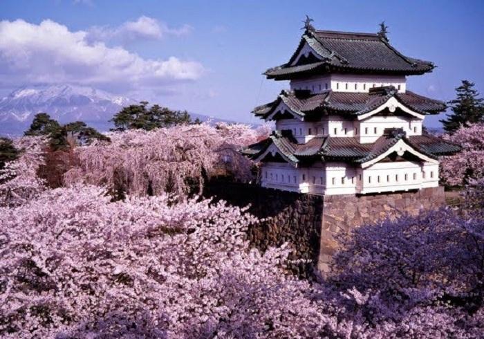 Du Lịch Nhật Bản Tự Túc 12 Ngày, Đi Khắp Nhật và Nhiều Trải Nghiệm