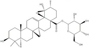 Axit pomolic (Ảnh Internet)