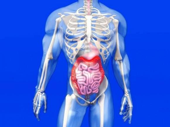 Cơ thể xuất hiện '1 đen, 1 đau và 2 mùi', có thể là ruột đang kêu cứu, đừng chậm trễ!