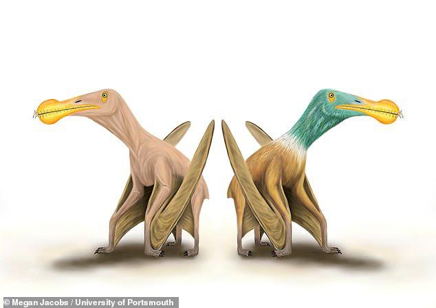 """Kinh hoàng """"quái vật khỏa thân"""" biết bay, ăn thịt cả khủng long - 1"""