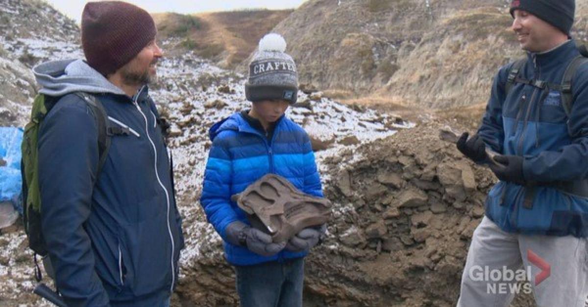 """Đi dã ngoại, cậu bé 12 tuổi tìm ra """"quái thú"""" 69 triệu tuổi - 1"""