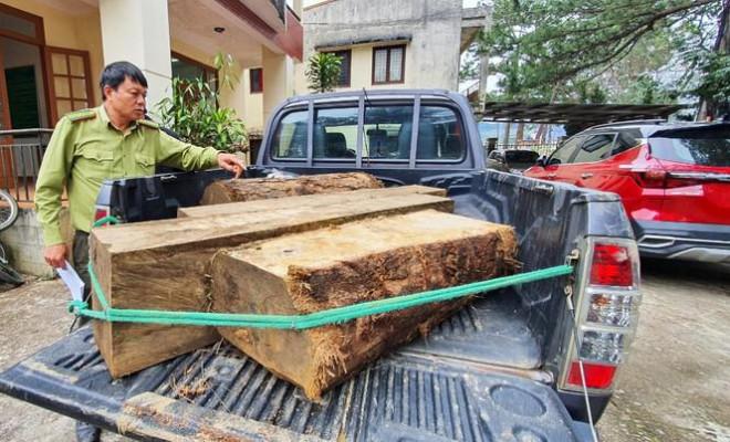 Cuộc rượt đuổi quyết liệt truy bắt xe chở gỗ lậu ở Cổng trời - 1