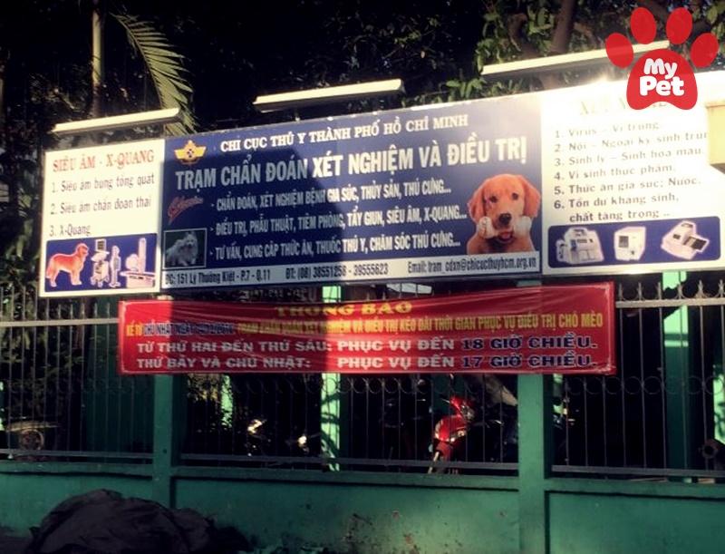 Các địa chỉ bệnh viện thú y quận 11 – TP Hồ Chí Minh