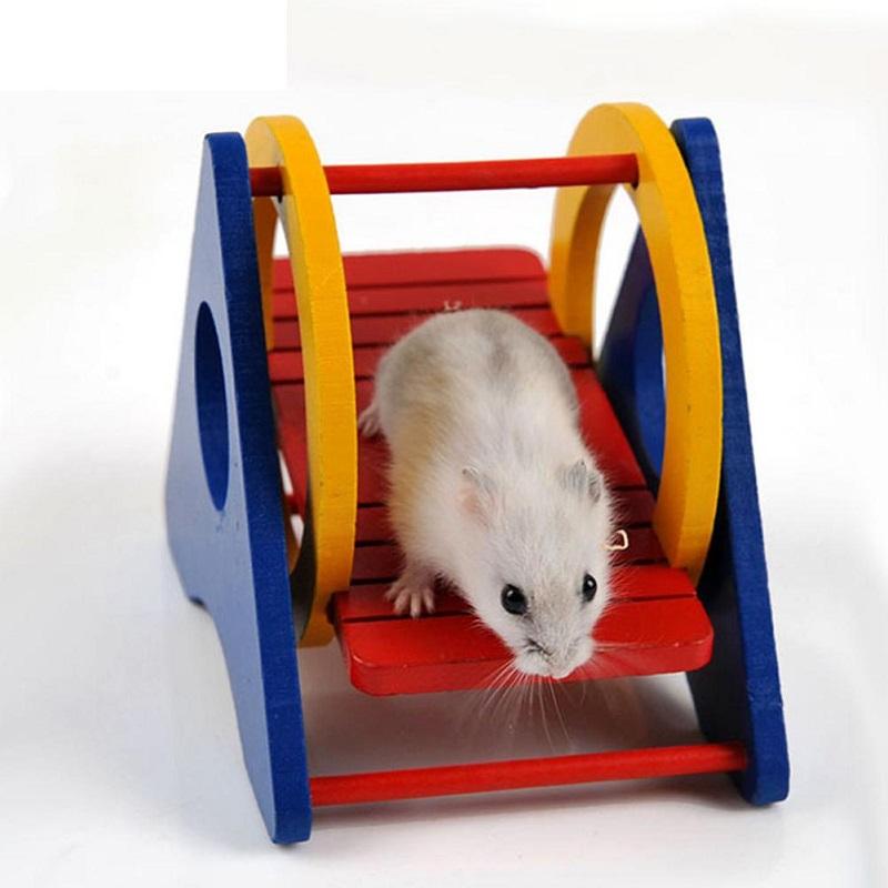 Chuột Hamster cần gì ở ngôi nhà của bạn