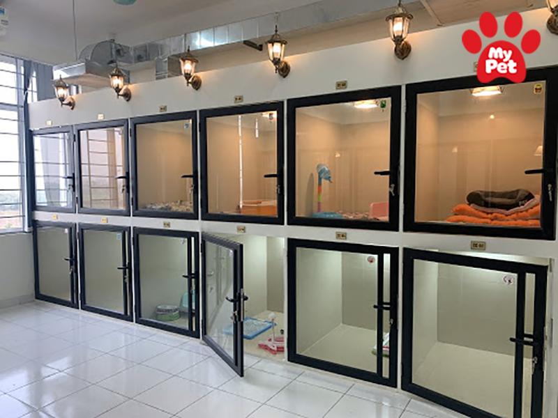 Địa chỉ khách sạn chó mèo ở Quận 4 – TP Hồ Chí Minh