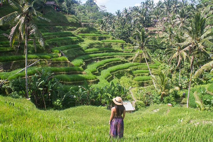 Đến Bali mà bỏ qua nơi này thì phí cả chuyến đi - 1