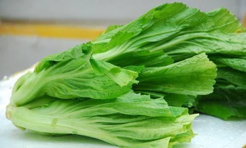 Năm loại thực phẩm có hàm lượng canxi cao nhất có sẵn ở chợ rau với giá rất rẻ!