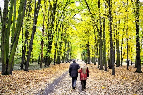 Bạn có thể sống lâu hơn bằng cách đi bộ? Xin nhắc lại: Sau 50 tuổi, thực hiện 3 điều này còn quan trọng hơn cả tập thể dục