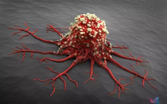 Ai cũng sợ mắc ung thư nhưng tế bào ung thư lại rất sợ nếu bạn đều đặn làm 7 việc này mỗi ngày