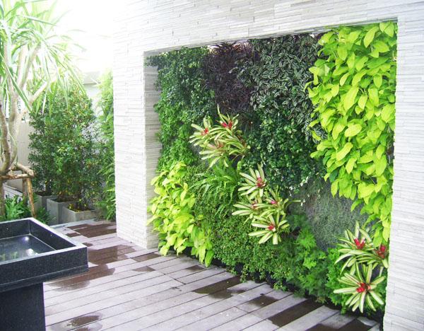 Tại sao nên thiết kế tiểu cảnh vườn đứng cho nhà phố ?