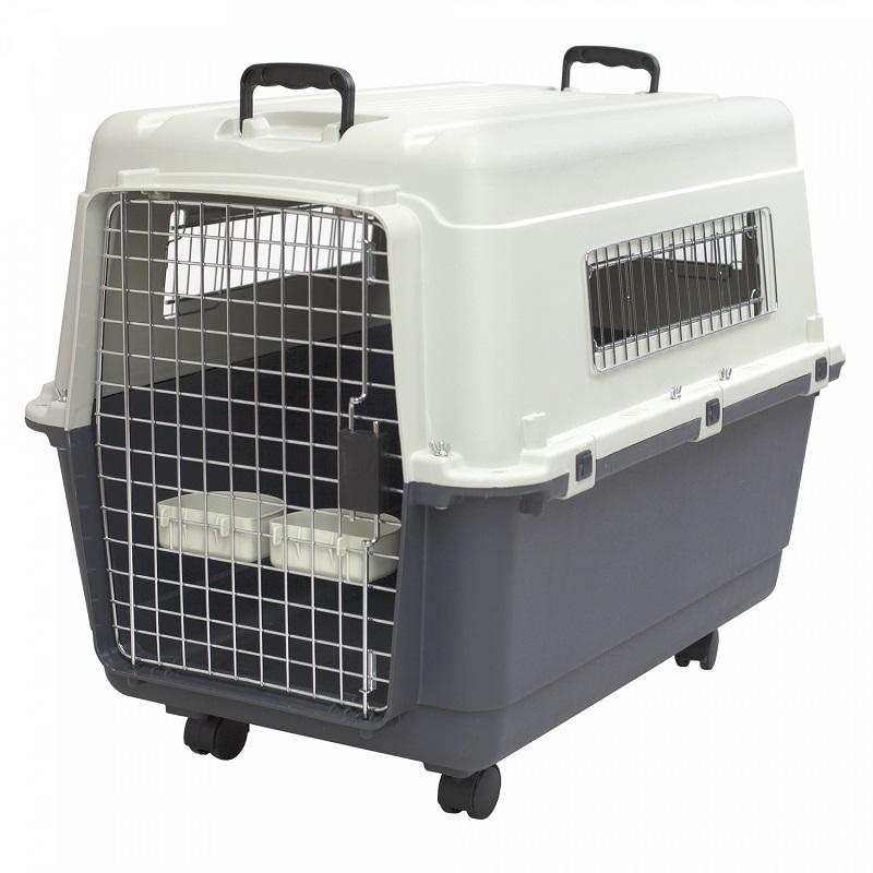 Tiêu chuẩn chọn lồng vận chuyển thú cưng khi đi máy bay