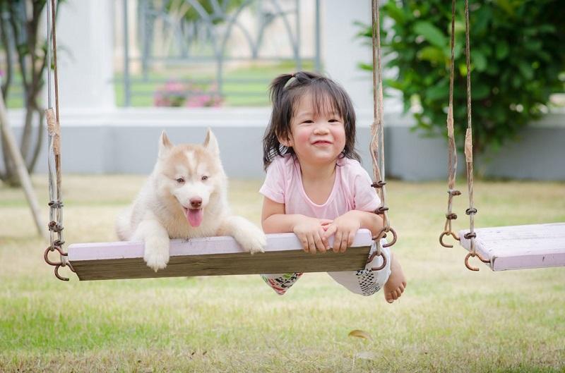 Làm sao để trẻ an toàn khi nhà có vật nuôi