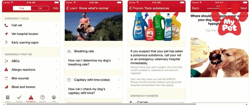 4 xu hướng ứng dụng thú cưng phổ biến nhất hiện nay trên thế giới